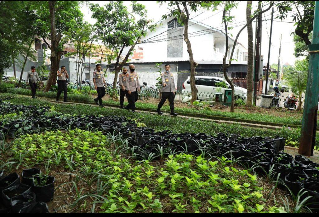 Kabaharkam Polri: Tanam Sayur di Polybag, Alternatif Tetap Produktif dari Rumah