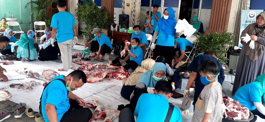 PABU Bagikan Hewan Kurban Kepada 200 Yatim Dan Dhuafa